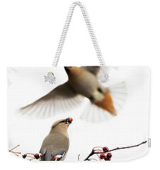 Weekender Tote Bag featuring the photograph Bohemian Waxwings by Mircea Costina Photography