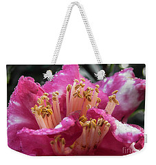 Weekender Tote Bag featuring the photograph Bold by Judy Hall-Folde