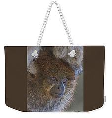 Bolivian Grey Titi Monkey Weekender Tote Bag