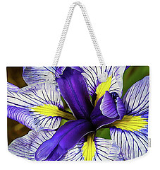 Boothbay Beauty Weekender Tote Bag