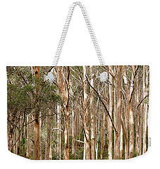 Weekender Tote Bag featuring the photograph Boranup Forest Portrait by Ivy Ho