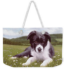 Border Collie Puppy Painting Weekender Tote Bag by Rachel Stribbling