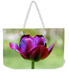 Weekender Tote Bag featuring the photograph Born In The Purple by Jessica Manelis