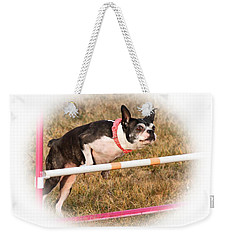 Weekender Tote Bag featuring the photograph Boston Agility by Debbie Stahre