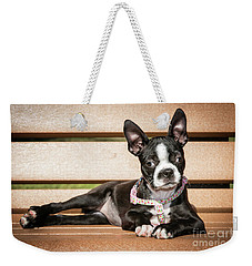 Boston Terrier Puppy Relaxing Weekender Tote Bag