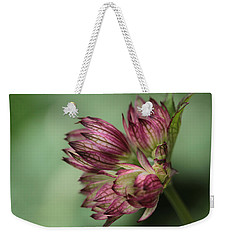Botanica .. New Beginnings  Weekender Tote Bag by Connie Handscomb