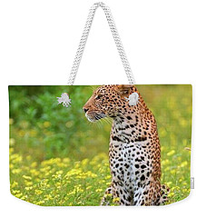 Botswana Leopard  Weekender Tote Bag by Happy Home Artistry