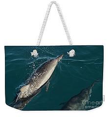 Bottle Nose Dolphin Weekender Tote Bag