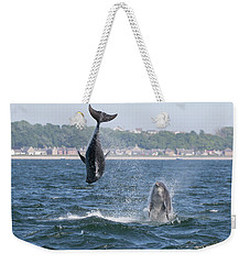 Weekender Tote Bag featuring the photograph Bottlenose Dolphins - Moray Firth Scotland #46 by Karen Van Der Zijden