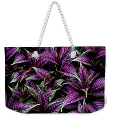 Bouquet Of Persian Shield Weekender Tote Bag