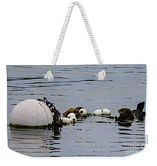 Weekender Tote Bag featuring the photograph Bouyed Sea Otter  by Suzanne Luft