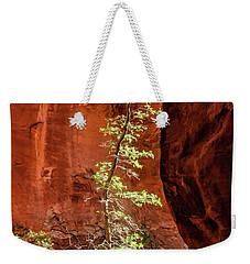 Boynton Canyon 07-034 Weekender Tote Bag