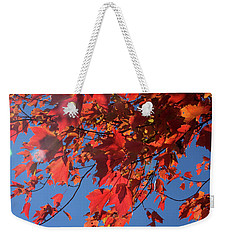 Branches Of Red Maple Leaves On Clear Sky Background Weekender Tote Bag