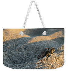 Brave Beginnings Sea Turtle Hatchling Delray Beach Florida Weekender Tote Bag