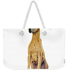 Weekender Tote Bag featuring the drawing Brave by Phyllis Howard