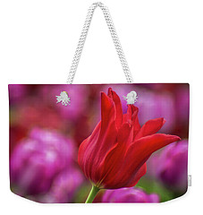 Weekender Tote Bag featuring the photograph Brazenly Delicate by Bill Pevlor