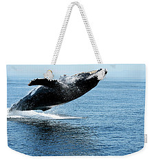 Breaching Humpback Whales Happy-2 Weekender Tote Bag