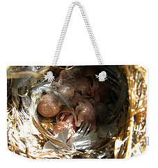 Weekender Tote Bag featuring the photograph Break Free - House Wren by Angie Rea