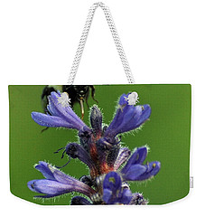 Weekender Tote Bag featuring the photograph Bumble Bee Breakfast by Glenn Gordon