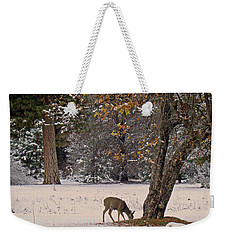 Weekender Tote Bag featuring the photograph Breakfast Time by Walter Fahmy