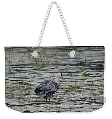 Breezy Blue- Great Blue Heron Weekender Tote Bag by David Porteus