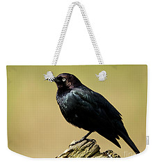 Brewers Blackbird Resting On Log Weekender Tote Bag
