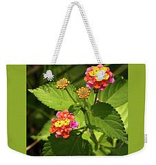 Bright Cluster Of Lantana Flowers Weekender Tote Bag