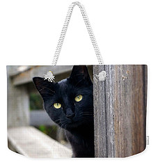 Bright Eyed Kitty Weekender Tote Bag