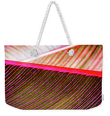 Weekender Tote Bag featuring the photograph Bright Leaves 548 by D Davila