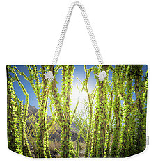 Weekender Tote Bag featuring the photograph Bright Light In The Desert by T Brian Jones