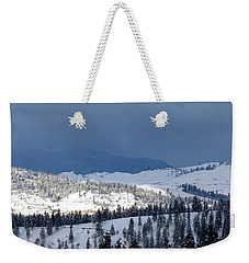Weekender Tote Bag featuring the photograph Bright Patch Of Sunshine by Will Borden