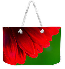 Bright Red Chrysanthemum Flower Petals And Stamen Weekender Tote Bag