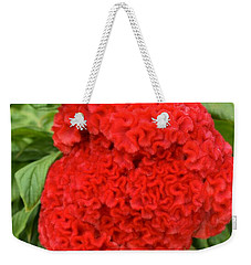 Weekender Tote Bag featuring the photograph Bright Red Cockscomb by James Fannin