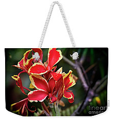 Weekender Tote Bag featuring the photograph Bright Spot In My Day by Mary Machare