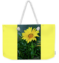 Weekender Tote Bag featuring the photograph Bright Yellow Gazania By Kaye Menner by Kaye Menner