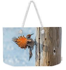 Brilliant Northern Flicker Woodpecker Weekender Tote Bag by Yeates Photography