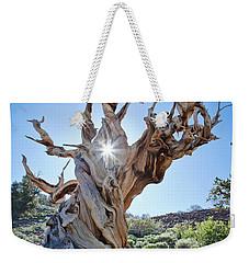 Bristlecone And Sun Weekender Tote Bag