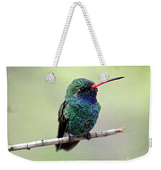 Broad-billed Hummingbird Portrait Weekender Tote Bag