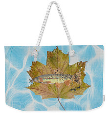 Brook Trout On Fly Weekender Tote Bag by Ralph Root
