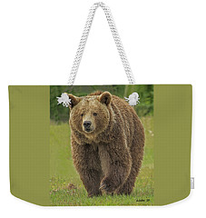 Brown Bear 1 Weekender Tote Bag