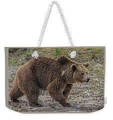 Brown Bear 6 Weekender Tote Bag