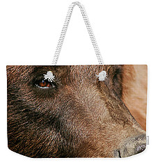 Brown Bear Weekender Tote Bag
