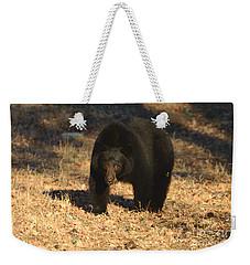 Black Bear Black Bear What Do You See Weekender Tote Bag