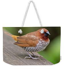Brown Bird Weekender Tote Bag