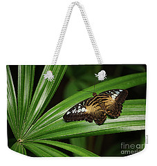 Brown Clipper Butterfly -parthenos Sylvia- On Frond Weekender Tote Bag