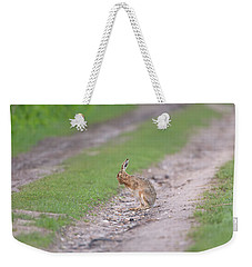 Brown Hare Cleaning Weekender Tote Bag