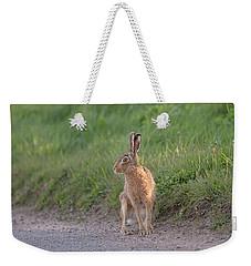 Brown Hare Listening Weekender Tote Bag