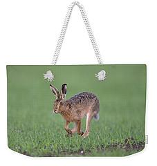 Brown Hare Running Weekender Tote Bag