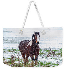 Brown Horse Galloping Through The Snow Weekender Tote Bag