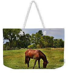 Brown Horse In Holland Weekender Tote Bag